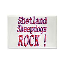 Shetland Sheepdogs Rectangle Magnet