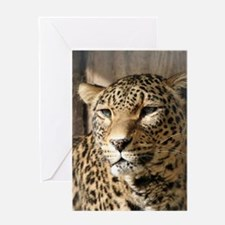 Leopard001 Greeting Cards