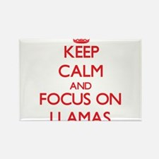 Keep Calm and focus on Llamas Magnets