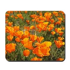 Spring Blossom Photo Mousepad