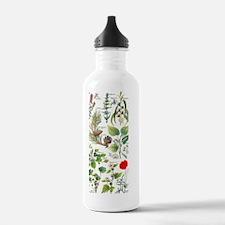 Larousse Plants calman Water Bottle