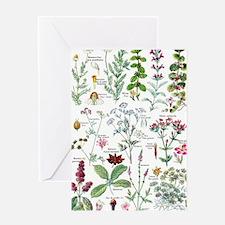 Larousse Plantes digestives, stimula Greeting Card
