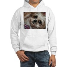 Head Shots (Brandy) Hoodie Sweatshirt