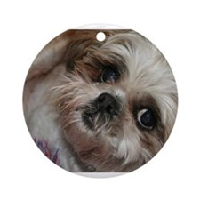 Head Shots (Brandy) Ornament (Round)
