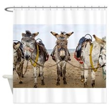 Donkeys Shower Curtain