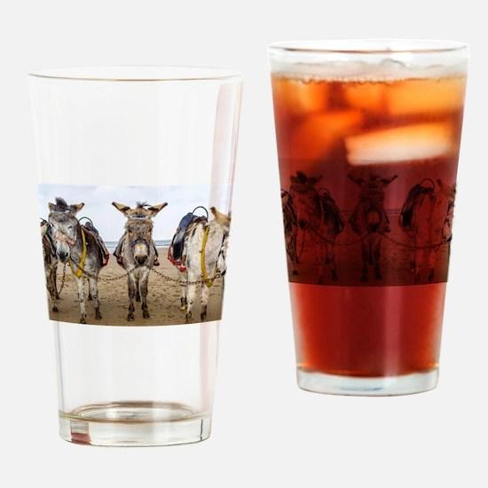 Cool Donkeys mules Drinking Glass