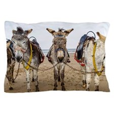 Cute Mexican joke Pillow Case