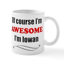 Iowa Is Awesome Mugs