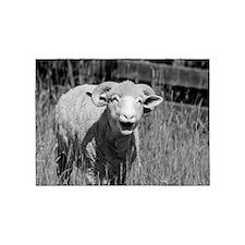 Cute Sheep 5'x7'Area Rug