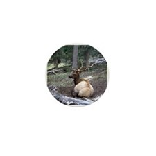 Bull elk resting in forest Mini Button