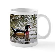 Wood Duck Mugs