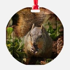 Autumn Squirrel at Lunch Ornament