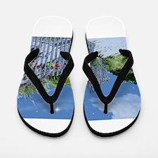 Unique California beach Flip Flops