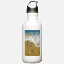 Cute Florida christmas Water Bottle