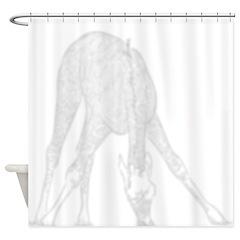 Giraffe Eating Shadow Shower Curtain