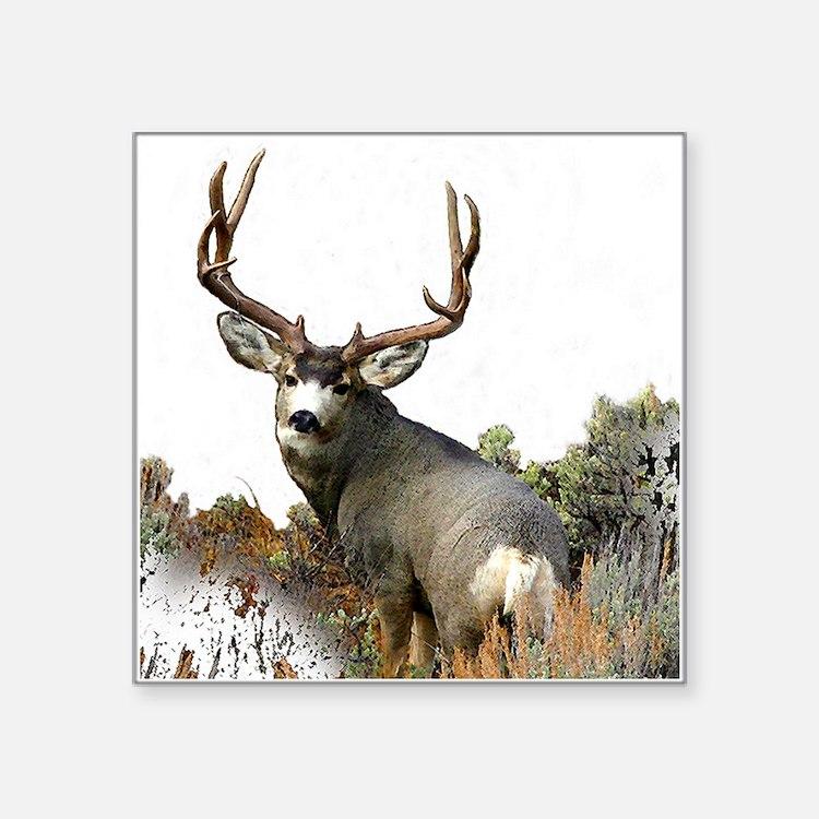 Mule DEER,, crown Series, 10,f copy Sticker