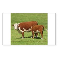 Hereford cow nursing calf Decal