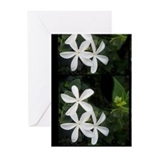 Three Sisters Greeting Cards