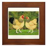 Wyandotte Rooster and Hen Framed Tile