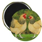 Wyandotte Rooster and Hen Magnet
