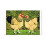 Wyandotte Rooster and Hen Mini Poster Print