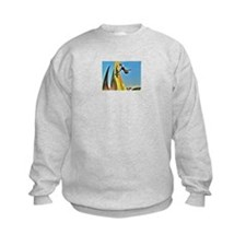 Funny Yolo Sweatshirt