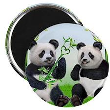 LOVING PANDAS Magnet