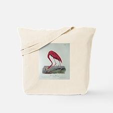 Audubon's Tote Bag