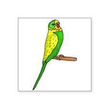 Budgie Bird Sticker