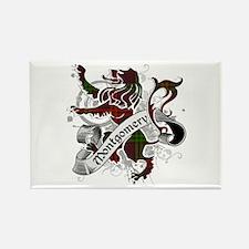 Montgomery Tartan Lion Rectangle Magnet