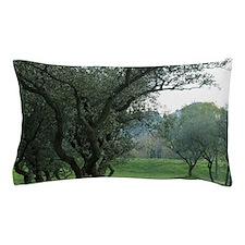 Olive trees at St.-Paul-de-Mausole mon Pillow Case
