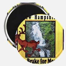 Unique New hampshire Magnet