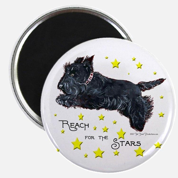 Scottish Terrier Star Magnet