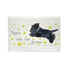 Scottish Terrier Star Rectangle Magnet