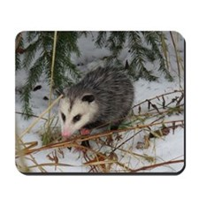 Snow Possum Mousepad