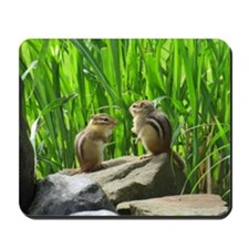 Two Chipmunks Mousepad