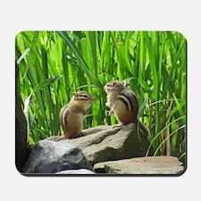 Two Chipmunks Mousepad