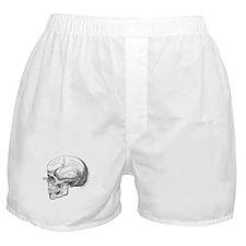 Anatomical Boxer Shorts