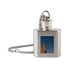 Garden of the Gods. Famous red rock Flask Necklace
