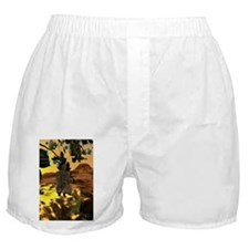 The invasion Boxer Shorts
