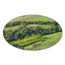 Mountain View of Vineyards & Vienna Decal