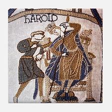 Harold warned after the comet is seen Tile Coaster