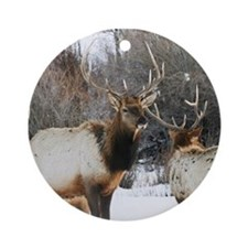 Bull elk in snow  Round Ornament