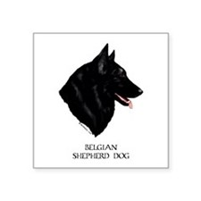 "Belgian Shepherd Dog Square Sticker 3"" x 3"""