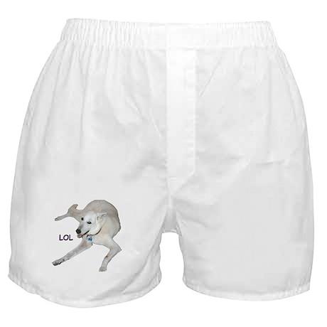 LOL Dog Boxer Shorts