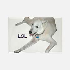 LOL Dog Rectangle Magnet