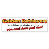 Golden retriever Single