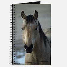 Unique Pose Journal