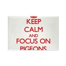 Keep Calm and focus on Pigeons Magnets