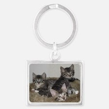 Cute Kittens Keychains